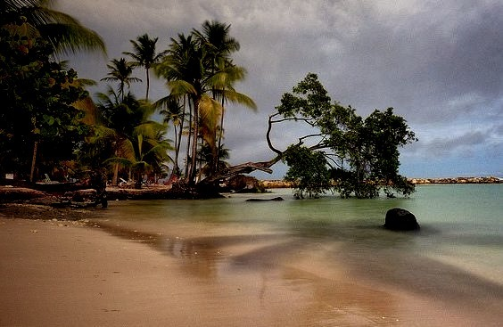 by 7Krys on Flickr.Cream Sand Beach - Guadeloupe Islands, Caribbeans.