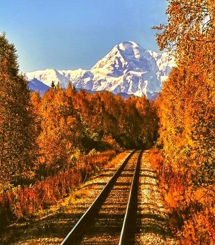 Wilderness Railroad, Mt. McKinley, Alaska