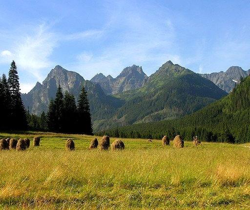 by beranekp on Flickr.Slovakian landscape in Bielovodska Dolina, High Tatra Mountains.