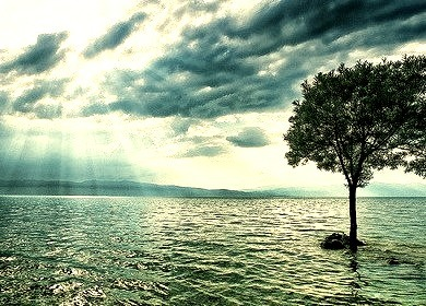Standing Alone, Trpejca, Macedonia
