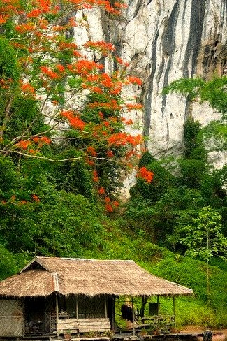 House on the river in Sai Yok National Park, Thailand