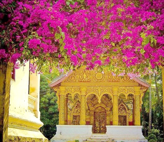 Floral entrance to Buddhist Wat, Luang Prabang, Laos