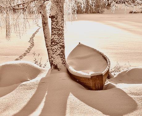Freshly Fallen Snow, Stevens Point, Wisconsin