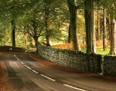 Stone Wall Road, Windemere, England