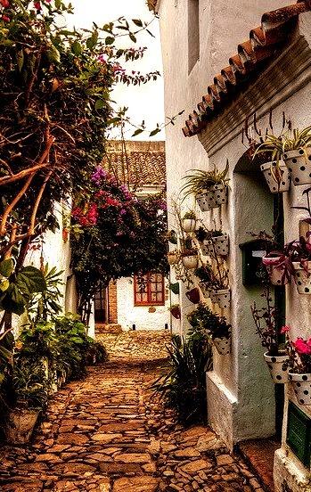 Beautiful streets in Castellar de la Frontera, Andalusia, Spain