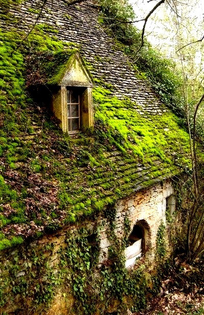 Ancient House, The Netherlands