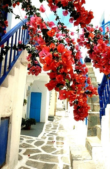 Narrow paved alley in Naoussa, Cyclades, Greece
